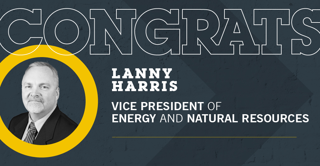 Harris Named VP of Energy and Natural Resource Division